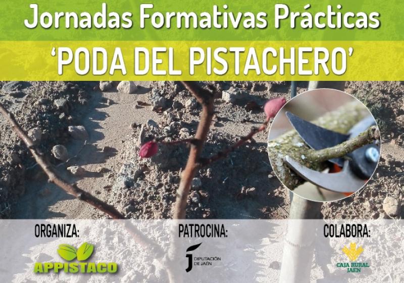 Jornadas Formativas Prácticas 'Poda del Pistachero'