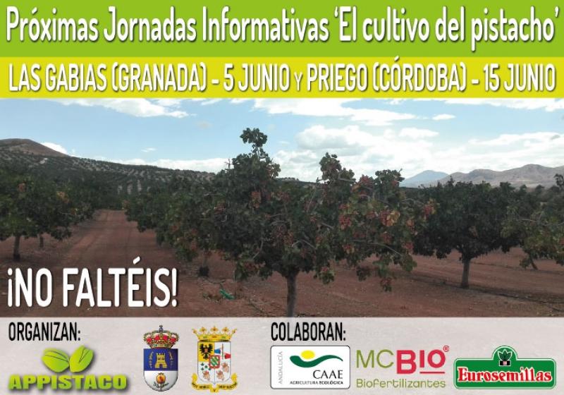 Próximas Jornadas Informativas sobre el cultivo del pistacho en Granada y Córdoba