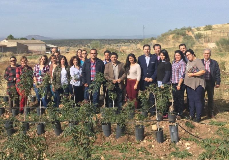 Diputación y la asociación de pistacheros unen fuerzas para favorecer la implantación de este cultivo en la provincia