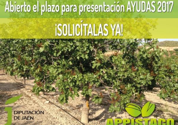 PLAZO DE JUSTIFICACIÓN | Subvenciones concedidas para el fomento y apoyo al sector agrícola y ganadero