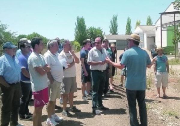 Comienzan las plantaciones de pistacho en la comarca